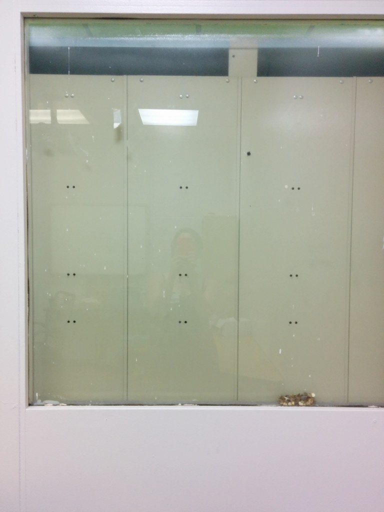 My window to nowhere. Complete with a sequined bracelet, lost eternally behind all of the lockers.